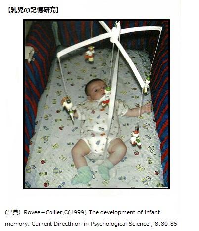 乳児の記憶研究