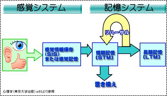 記憶システムの関連性
