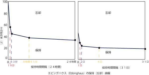 ビングハウス(Ebbinghaus)の保持(忘却)曲線